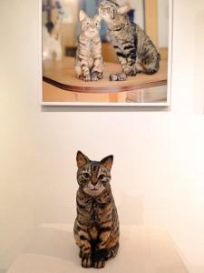 猫のタラちゃんの肖像彫刻