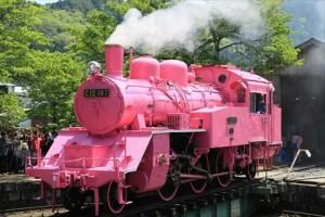 若狭鉄道ピンクSL